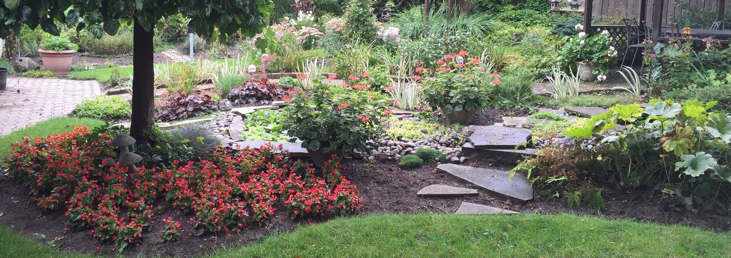 Rain Gardens, Sustainable, Organic